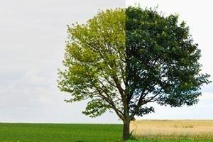 春季与夏日替换期间甲状腺患者有什么必需要分外留意的