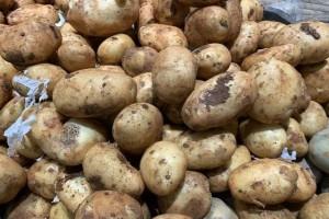 发芽的马铃薯还能不能吃我也是刚知道看完告知家里人别再扔了
