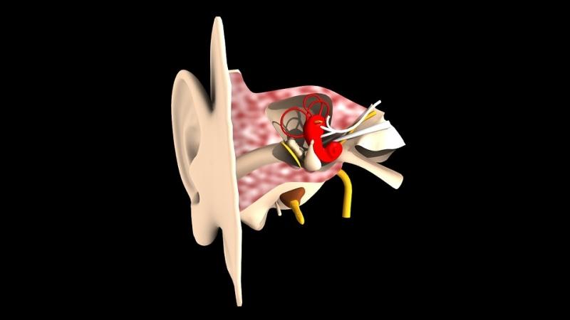 耳朵深处发痒耳鸣怎样缓解耳鸣症状